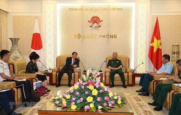 Vietnam et Japon renforcent leur cooperation dans le reglement des consequences de la guerre hinh anh 1