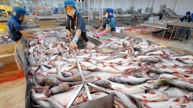 Les exportations de produits aquatiques vers la Chine pourraient se redresser au 2e semestre hinh anh 1