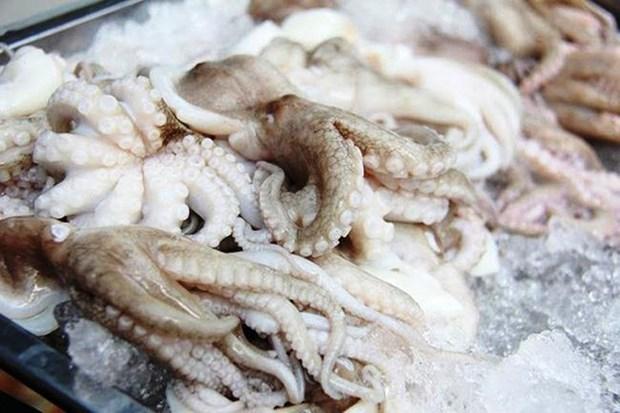 La Republique de Coree, premier marche a l'export des cephalopodes du Vietnam hinh anh 1