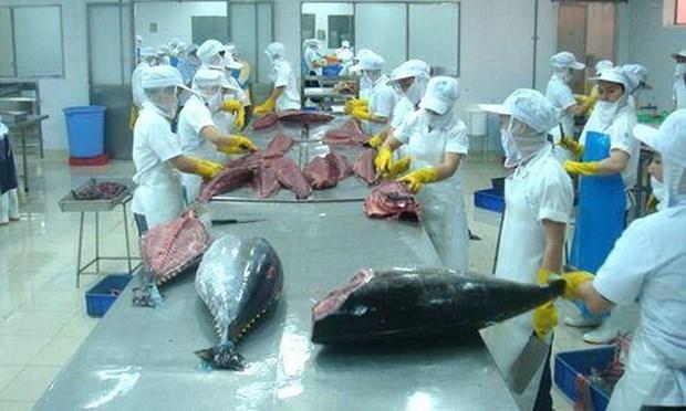 Bond des exportations nationales de thon vers la Grece hinh anh 1