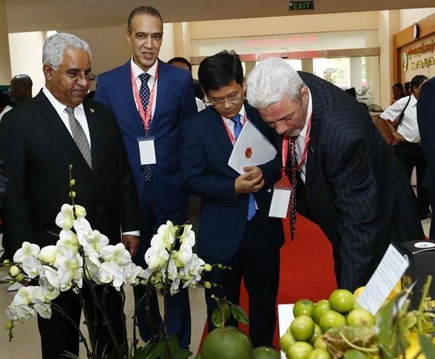 Cooperation agricole entre le Vietnam et le Moyen-Orient et l'Afrique hinh anh 1