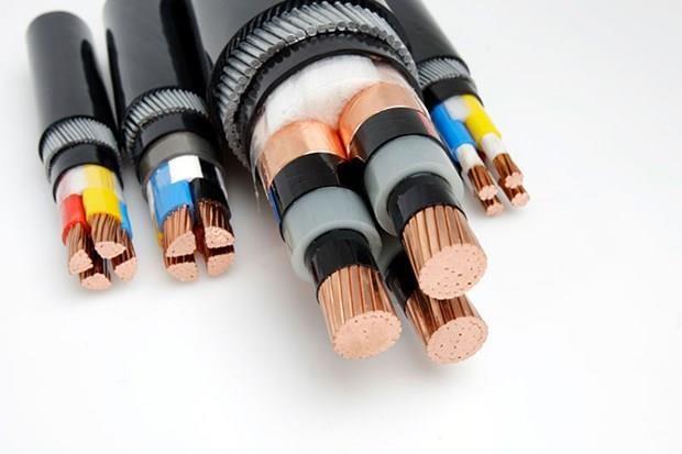 Fils et cables electriques: exportations pour plus d'un milliard de dollars en huit mois hinh anh 1