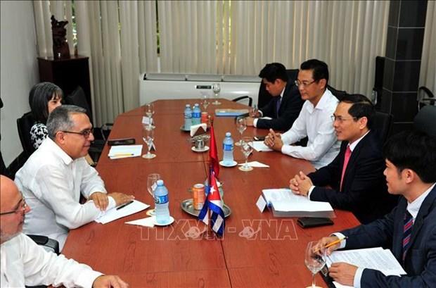 Vietnam-Cuba : 5e consultation politique entre les ministeres des Affaires etrangeres hinh anh 1