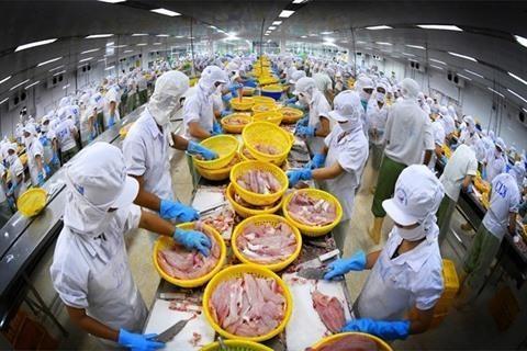 8,9 milliards d'USD d'exportation de produits aquatiques hinh anh 1