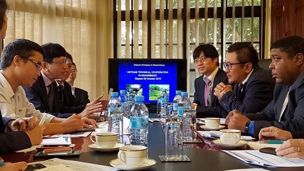 Des entreprises vietnamiennes et japonaises s'associent pour soutenir le developpement du Mozambique hinh anh 1