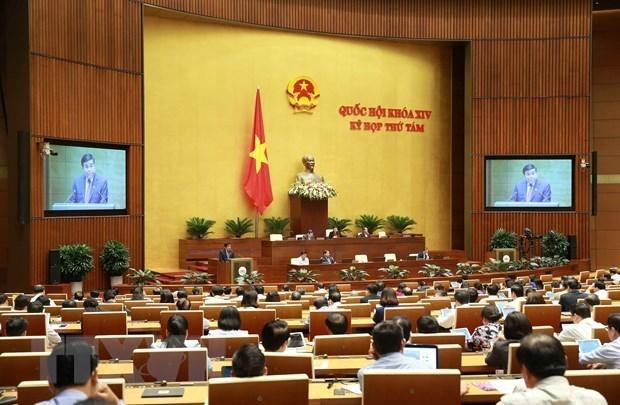 Discussion sur les projets de loi sur l'organisation du gouvernement et des administrations locales hinh anh 1