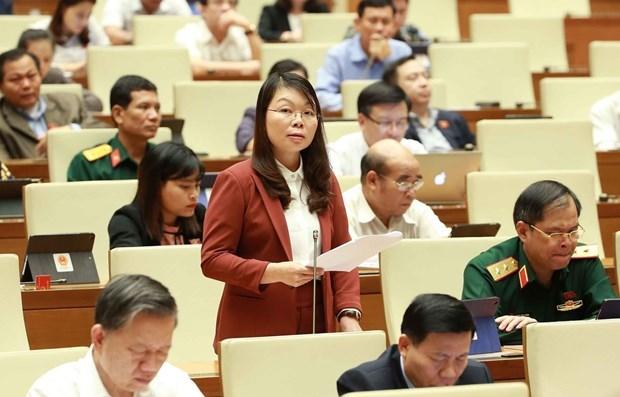 8e session de l'AN de la 14e legislature : Donner des avis sur deux projets de loi hinh anh 1