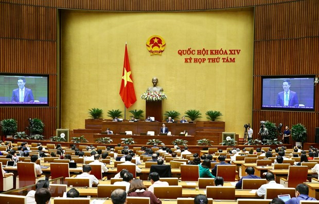 8e session de l'AN: Vote d'une resolution, discussion de deux projets de loi hinh anh 1