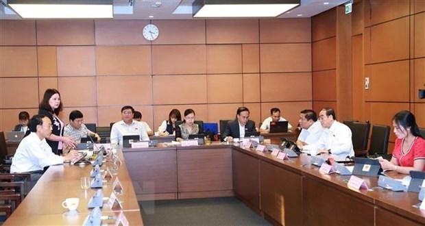 L'AN discute de deux projets de loi et adopte un plan de developpement pour les minorites ethniques hinh anh 1