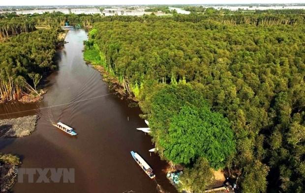 Changement climatique: Solutions pour reduire l'affaissement des terres dans le delta du Mekong hinh anh 1
