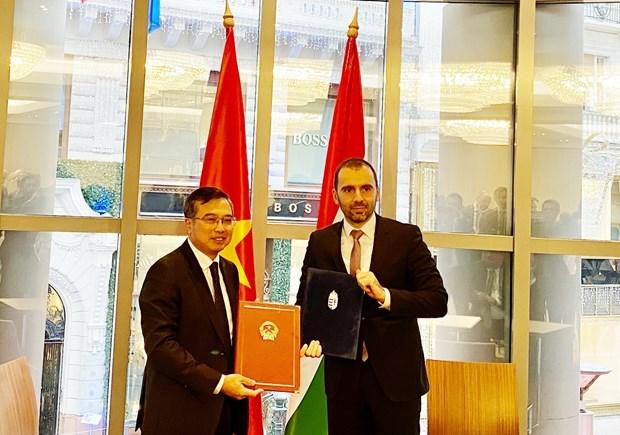 9eme session du Comite mixte sur la cooperation economique Vietnam-Hongrie hinh anh 1