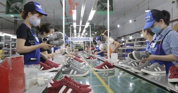 Le secteur national de la chaussure se porte bien hinh anh 1