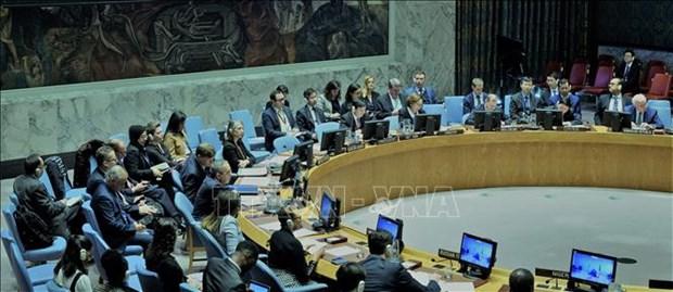 Le Conseil de securite de l'ONU discute de la situation du Mali sous la presidence du Vietnam hinh anh 1