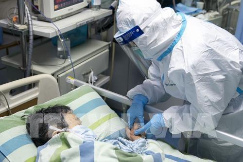 Le Vietnam intensifie la prevention et la lutte contre le nouveau coronavirus hinh anh 1