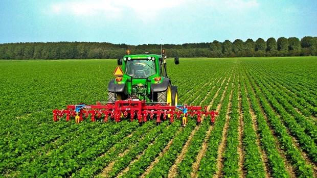Belles perspectives pour l'agriculture vietnamienne en 2020 hinh anh 1