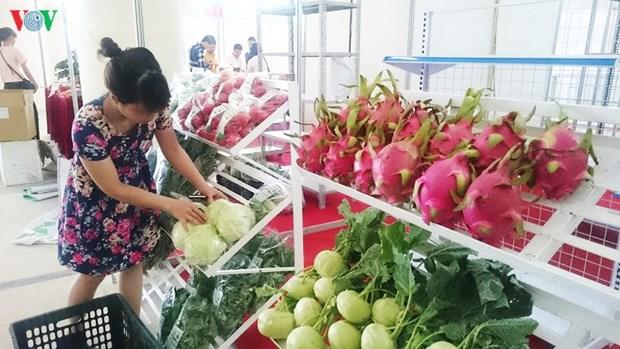 L'accord EVFTA offre une grande opportunite d'exportation au secteur agricole du Vietnam hinh anh 1
