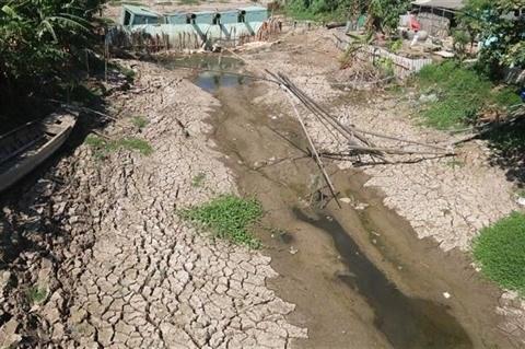 """Insee Vietnam parraine le projet """"Apporter de l'eau douce au delta du Mekong"""" hinh anh 1"""