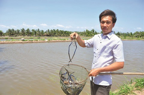 Tra Vinh: Une vie en harmonie avec la nature a Con Chim hinh anh 1
