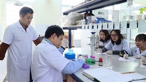 Vietnam-Belgique: Vingt ans de cooperation dans la genetique des races d'elevage hinh anh 1