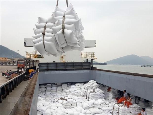 Le PM approuve la reprise des exportations de riz hinh anh 1