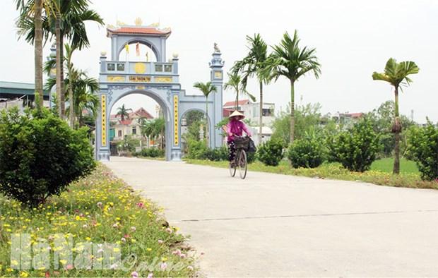 Le district de Binh Luc (Ha Nam) repond aux normes de la Nouvelle ruralite hinh anh 1