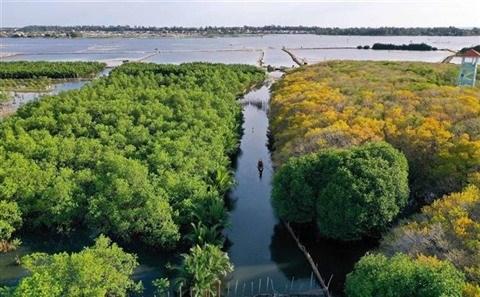Vietnam, un des pays les plus riches en biodiversite hinh anh 1