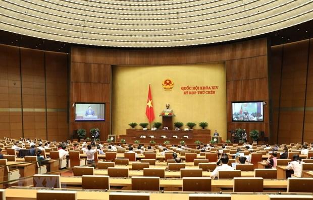 9e session de la XIVe legislature de l'AN: Approbation de la resolution ratifiant l'EVFTA hinh anh 1