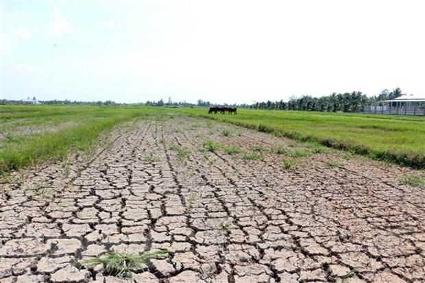 Dereglement climatique: plan pour rehausser la resilience et l'adaptation du Vietnam hinh anh 1
