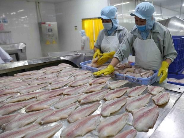 Le portail aide les entreprises du delta du Mekong a obtenir des informations sur l'EVFTA   hinh anh 1