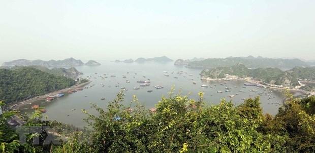 La reserve mondiale de biosphere de Cat Ba devient une destination attrayante hinh anh 1