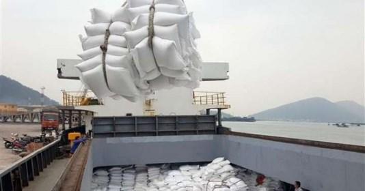 80.000 tonnes de riz vietnamien seront annuellement exportees dans l'UE hinh anh 1