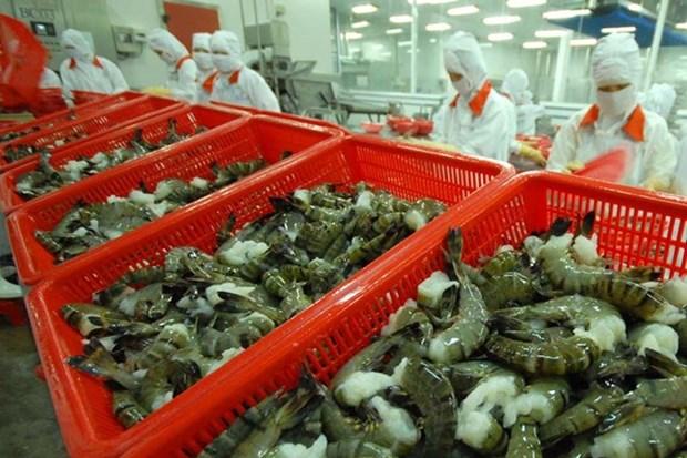 Croissance des exportations nationales de crevettes en Coree du Sud hinh anh 1