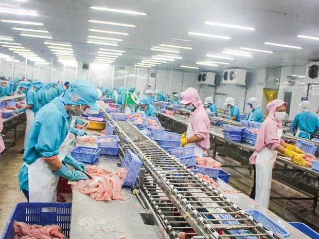 De bons signes pour les exportations de poissons tra a Singapour hinh anh 1