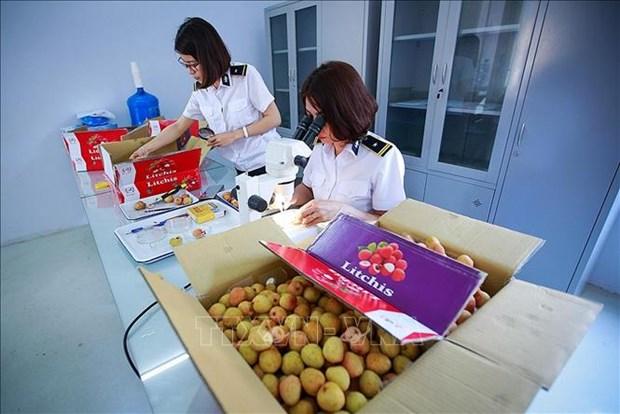 Le Vietnam represente un partenaire economique ideal pour l'Australie hinh anh 1