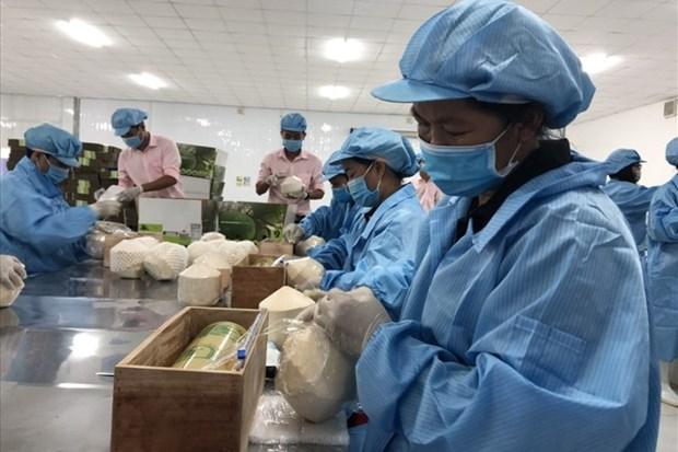 Les exportations vietnamiennes vers l'UE atteignent 3,8 milliards de dollars en aout hinh anh 1