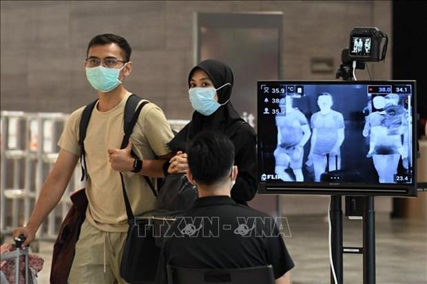 Singapour ouvre aux visiteurs du Vietnam et d'Australie hinh anh 1
