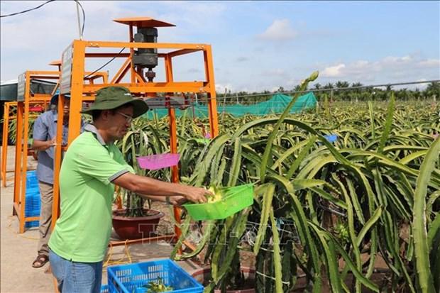 Deux localites de Tien Giang satisfont aux normes de la Nouvelle Ruralite hinh anh 1