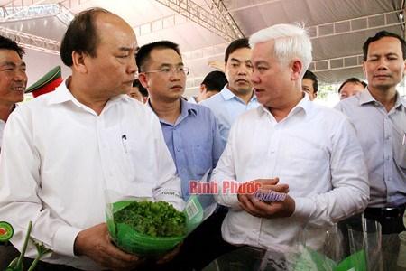 Le Premier ministre travaille dans la province de Binh Phuoc hinh anh 1