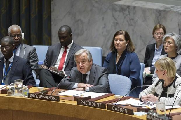 Le chef de l'ONU veut faire de la prevention des conflits sa priorite hinh anh 1