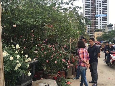 Le marche floral de Van Phuc bat son plein a l'approche du Tet hinh anh 1