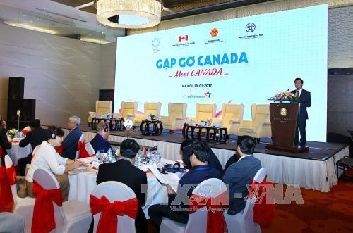 Le Vietnam et le Canada cultivent leurs liens d'amitie et de cooperation hinh anh 1