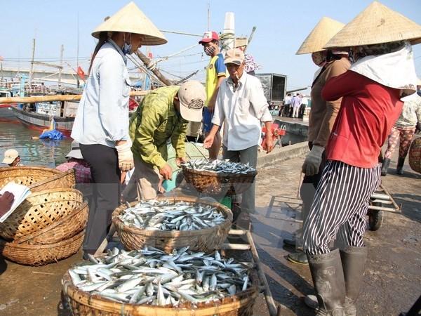 A Quang Tri, les pecheurs sinistres recoient des indemnites avant le Tet hinh anh 1