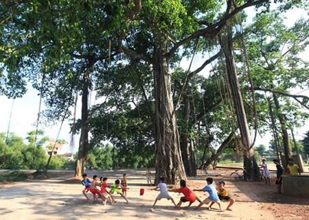 La ou se tisse la trame d'une vie communautaire au Vietnam hinh anh 2