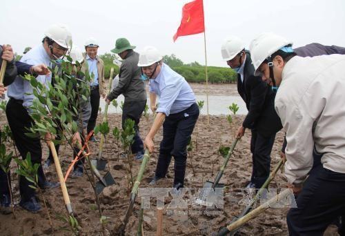 Mieux gerer les zones humides pour prevenir les risques de catastrophes hinh anh 1