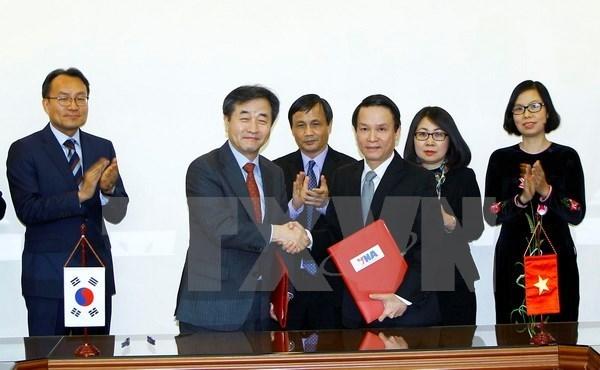 L'Agence vietnamienne d'information et Yonhap renforcent la cooperation hinh anh 1