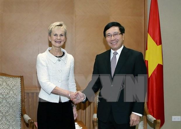 Le vice-PM et ministre des AE Pham Binh Minh recoit la gouverneure d'Ostergotland (Suede) hinh anh 1