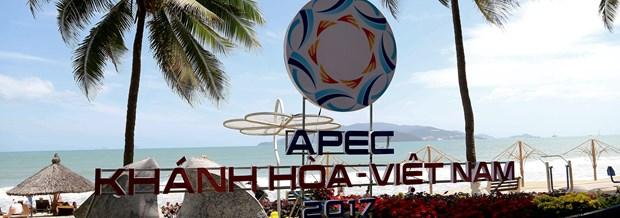 Le Vietnam œuvre activement pour le succes de l'APEC 2017 hinh anh 1