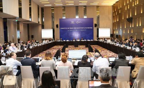 APEC 2017, opportunite en or pour promouvoir le commerce et l'investissement hinh anh 1