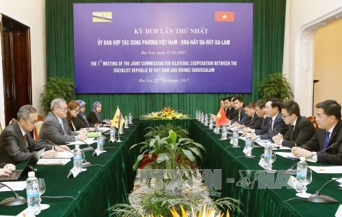 La 1ere session du Comite de cooperation bilaterale Vietnam-Brunei hinh anh 1