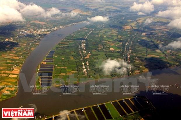Les experts appellent a economiser l'eau agricole dans le delta du Mekong hinh anh 1